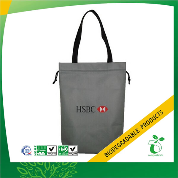 Business & Convention Non Woven Drawstring Bags, ECOBAG-NWBA-C01 ...