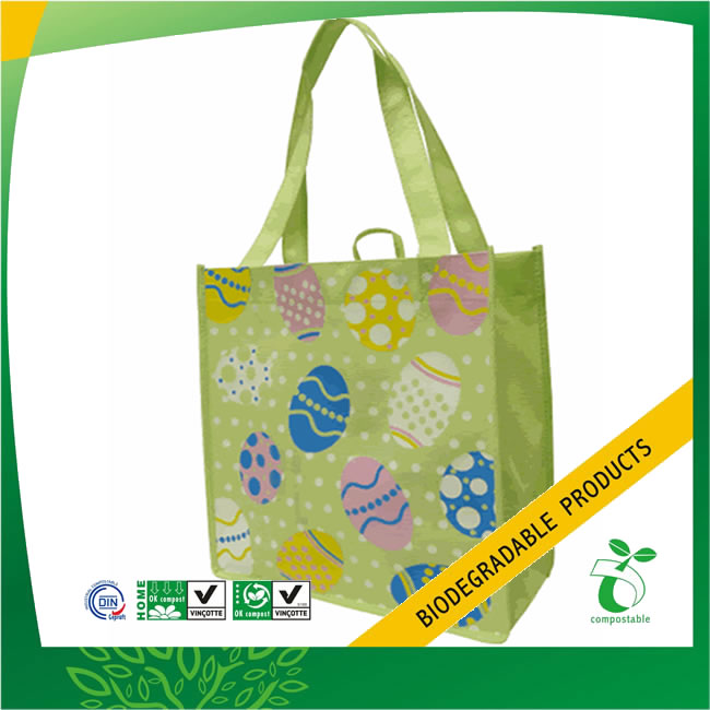 All Nature Non-Woven Reusable Grocery Bag