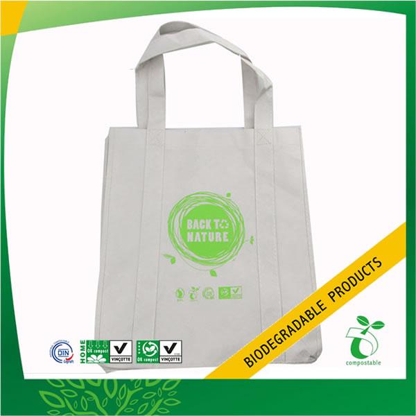 Eco-Friendly Non Woven Gift Bag for Shopping
